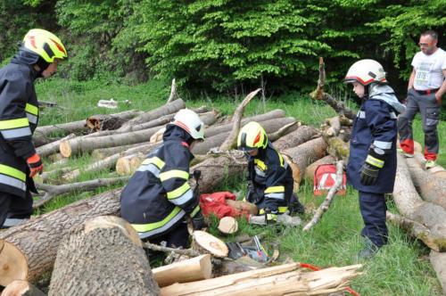 """Einsatzübung """"Forstarbeiter unter Baum eingeklemmt"""""""