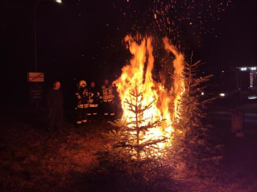 Veranschaulichung Christbaumbrand